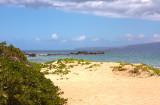 Kamaole Beach Park 3 Number 3 - Sand and Reef
