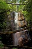 Silver Falls`q (fit2)_5681,3Cr2Dri`0505231114.jpg