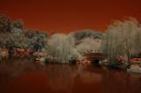 Huntington Infrared - 05/28/12