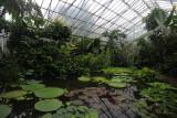 Royal Botanic Garden Edinburgh 06/16/12