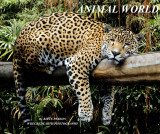 COVER ANIMAL WORLD pbase.jpg