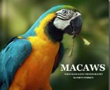 BOOK MACAWS.jpg