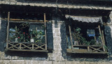 Tibetan windows