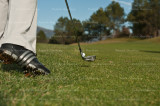 golf 3777.jpg