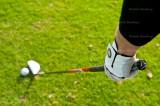 golf 3804.jpg