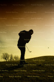 golf 3993.jpg