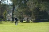 golf 4090.jpg