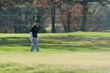 golf 4129.jpg