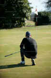 golf 4225.jpg