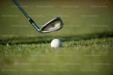 golf 4695.jpg