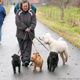Liisa, temporary doglady!