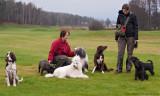 21/11 Groupshot from todays dog-walk.