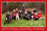 Happy Holidays! Wishes all Sundays Doggie Walkers!