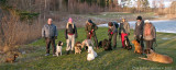 Groupshot from Doggie-meetup January 6