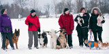 Groupshot from todays doggiewalk/obedience class.