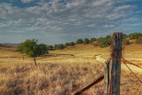 Santa Rose Plateau Reserve