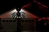 Besider Spider