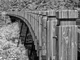 Bridge-rail1.jpg