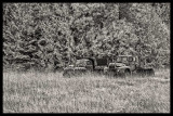 old-dead-trucks-IR-1.jpg