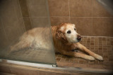 jake_shower-0012.jpg