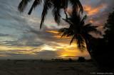 Selingan Island