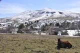 Neighbors Horse and Chinese Peak _DSC4921.jpg