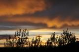 pocatello sunset _DSC7506.jpg