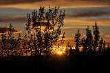 Pocatello Sunset _DSC7503.jpg