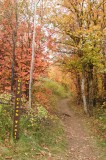 City Creek Trail Sign in Autumn Vertical _DSC1815.jpg