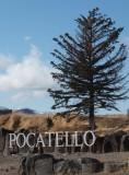 New Pocatello Sign vertical DSCF4981.jpg