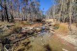 Dry creekbed