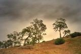 Hills of Bacchus Marsh