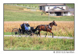 Mohican / Amish Country 2010