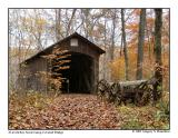 Boy Scout Camp Covered Bridge