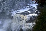 Blackwater Falls WV from Gentle Trail overlook