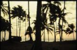 1976 Goa
