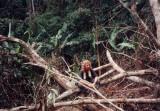 Cuc Phuong Jungle Trek