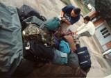 Luggage Loading