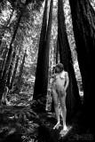 Julie in Redwood Grove