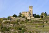 Burg Gutenfels-DSC_6292-800.jpg