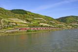 Rhine River Valley-DSC_6262-800.jpg