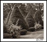 Laurel Hill Cemetery 2