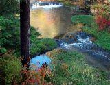 Black Hills Fall