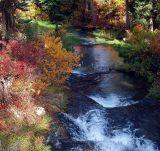 Black Hills Fall 2
