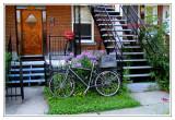 Randonnées en vélo