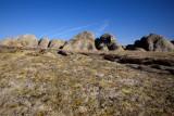 Selby Rocks