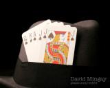 Oct 19: Cards