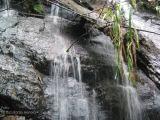 Cataratas en el Bosque Nuboso