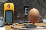 Equilibrio de un Huevo Sobre un Clavo, Solo en el Ecuador Real