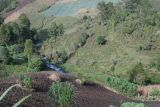 Rios y Campos de Cultivo